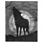 Full Moon - Wolf Howling - IN0023